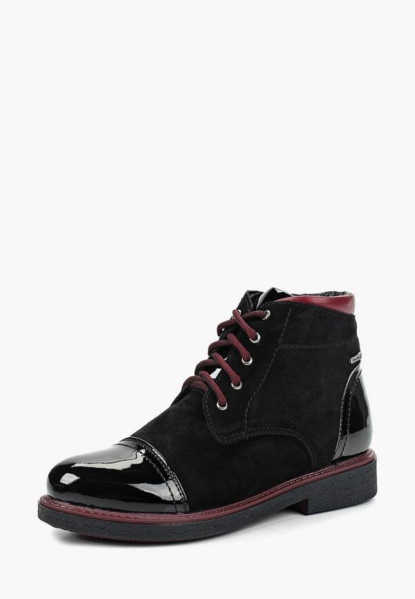 Купить Ботинки Shoiberg, mp002xw1h1d7, черный, Осень-зима 2017/2018
