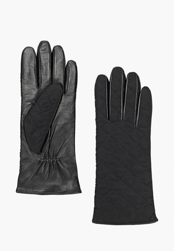 Купить Перчатки Labbra, mp002xw1h6yi, черный, Осень-зима 2018/2019