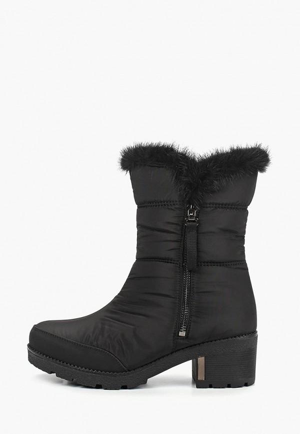 Купить Дутики Shoiberg, mp002xw1hl68, черный, Осень-зима 2017/2018