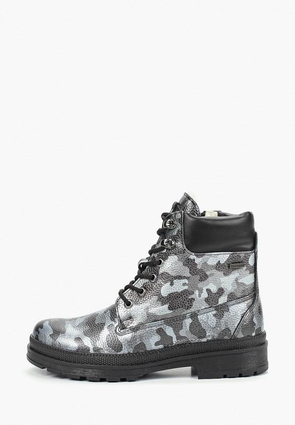 Купить Ботинки Shoiberg, mp002xw1hl6b, Осень-зима 2017/2018