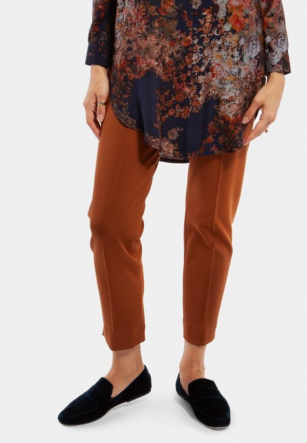 женские зауженные брюки vladi collection, коричневые