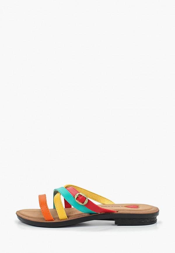 женские сланцы t.taccardi, разноцветные