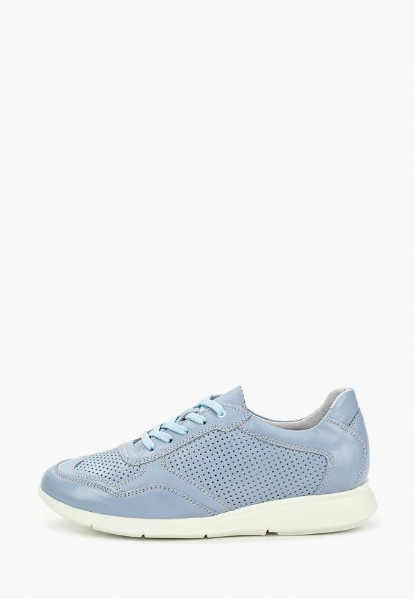 женские кроссовки shoiberg, голубые
