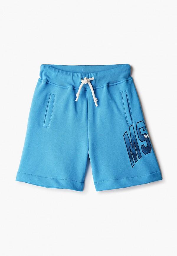 шорты msgm kids для мальчика, голубые