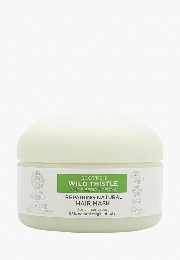 Купить Маска для волос Natura Siberica, Восстанавливающая, 120 мл, na026luatrp1, прозрачный, Весна-лето 2019