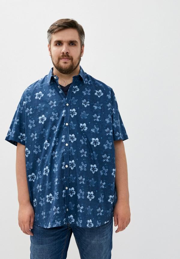 мужская рубашка north 56-4, синяя