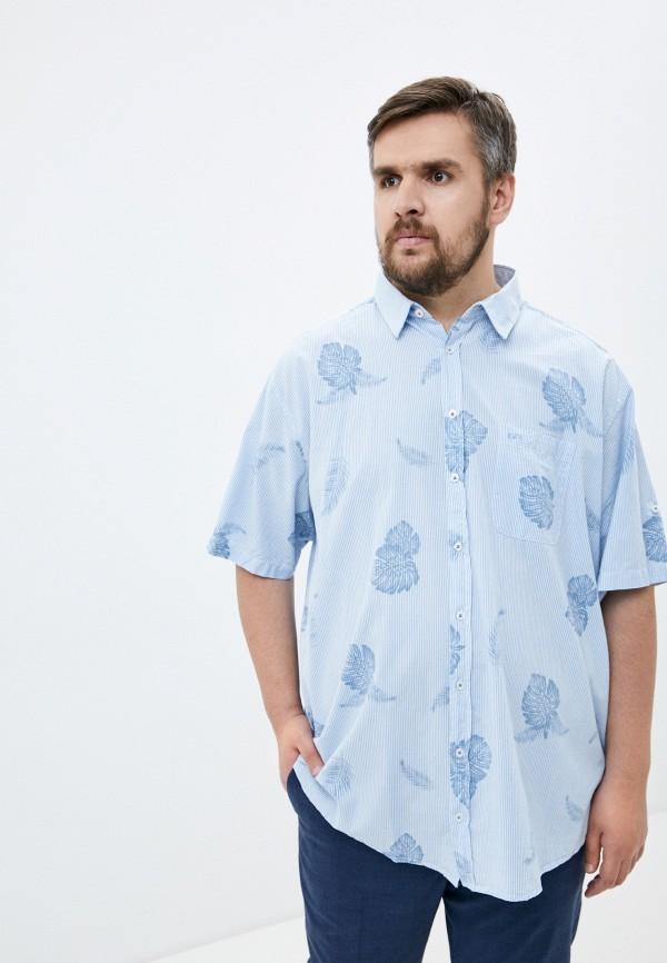 мужская рубашка north 56-4, голубая