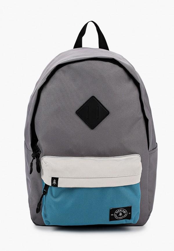 рюкзак parkland для мальчика, серый