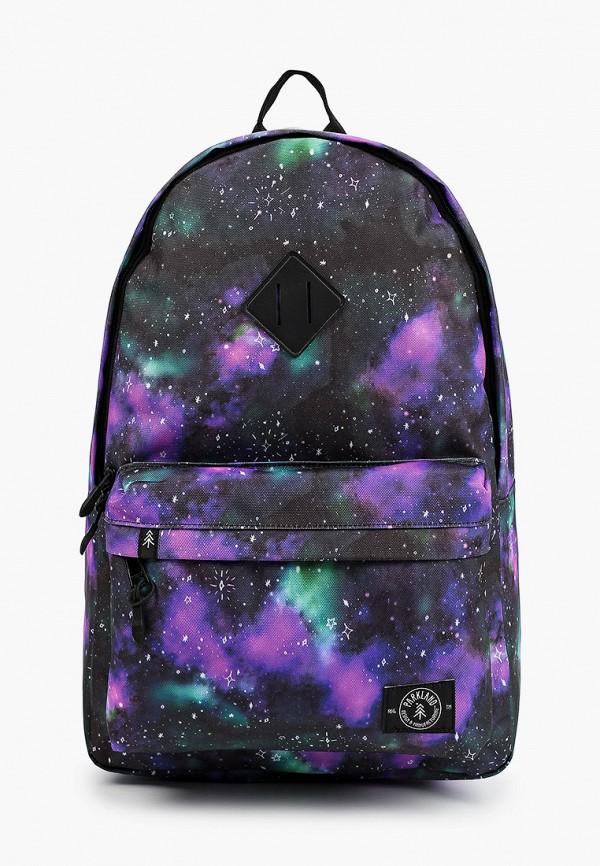женский рюкзак parkland, разноцветный