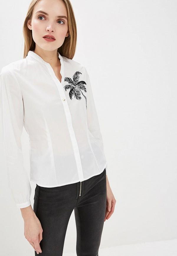 Блуза Pennyblack Pennyblack PE003EWEEWT5