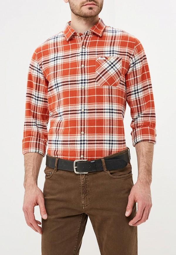 Рубашка Pepe Jeans Pepe Jeans PE299EMBTDE4