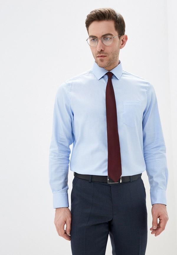 мужская рубашка с длинным рукавом pierre cardin, голубая