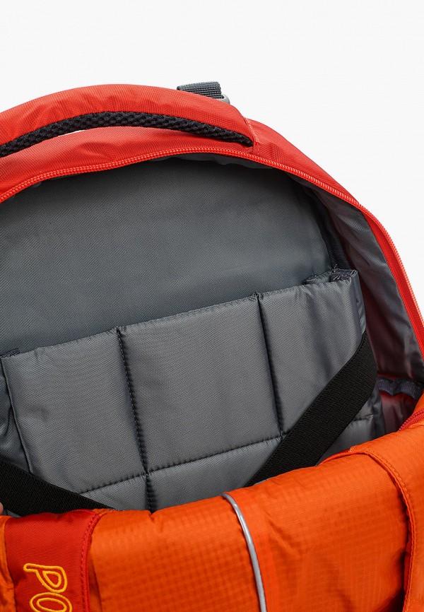 Рюкзак детский Polar П222-02 Фото 3
