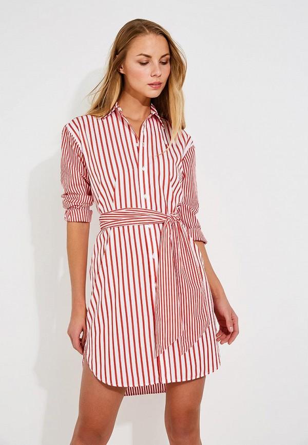 Платье Polo Ralph Lauren Polo Ralph Lauren PO006EWYYW32 кеды polo ralph lauren polo ralph lauren po006ampzv77