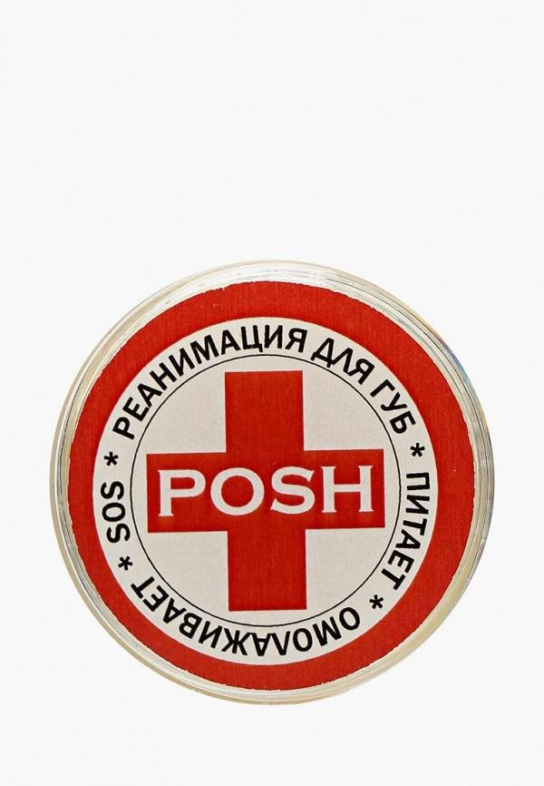 Бальзам для губ Posh Posh PO021LWXZM67 цена 2017