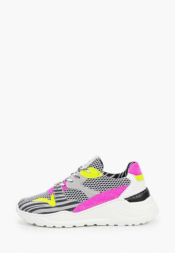 женские кроссовки principe di bologna, разноцветные