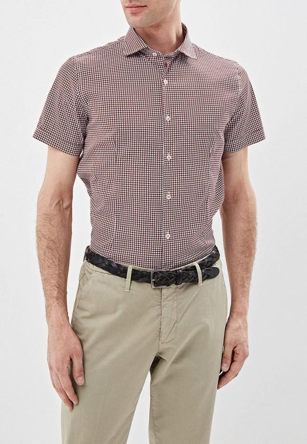 Рубашка Primo Emporio Primo Emporio PR760EMFHOH6 цена