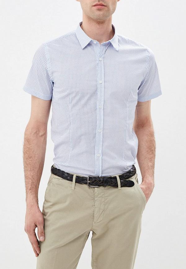 все цены на Рубашка Primo Emporio Primo Emporio PR760EMFHOH7 онлайн