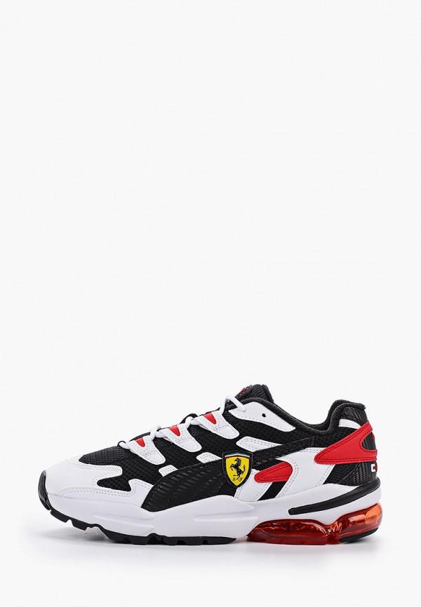 мужские низкие кроссовки puma, разноцветные