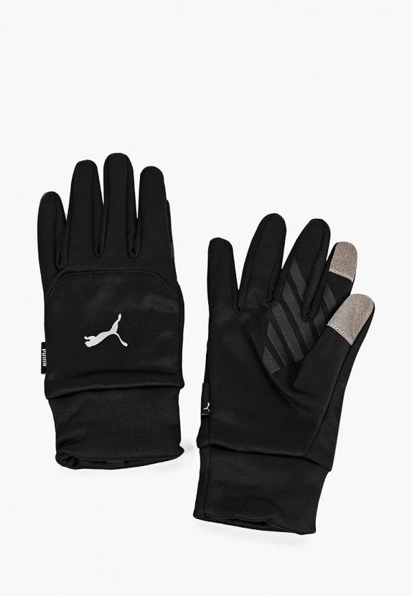 Купить Перчатки PUMA, PR Warm Gloves, PU053DMCJHB2, черный, Осень-зима 2018/2019