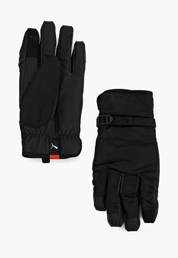 Купить Перчатки PUMA, SF LS Gloves, PU053DUCJHB8, черный, Осень-зима 2018/2019