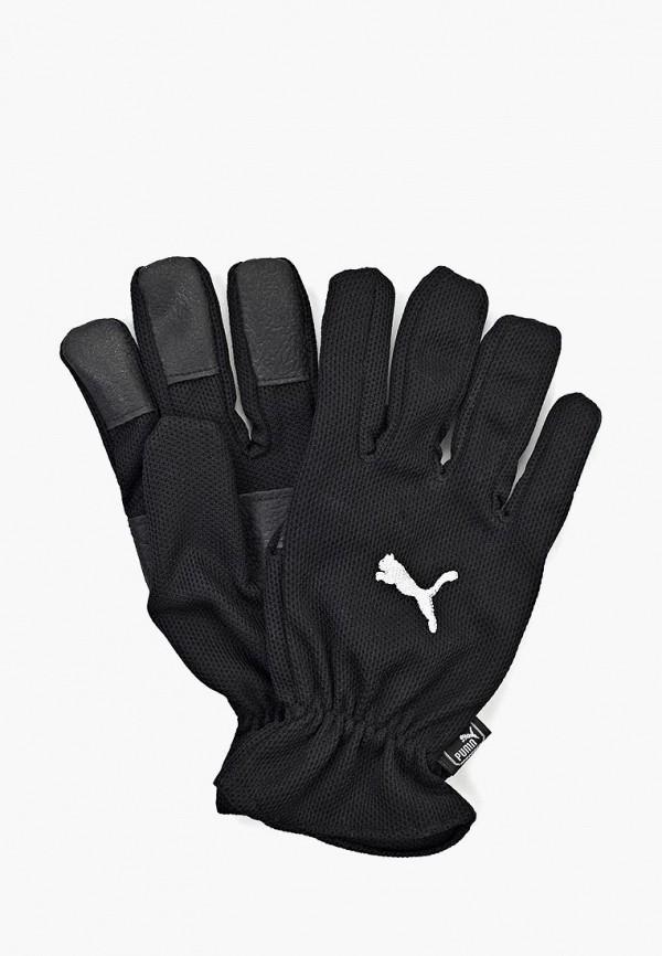Купить Перчатки PUMA, Winter Players, PU053DUKE670, черный, Осень-зима 2018/2019
