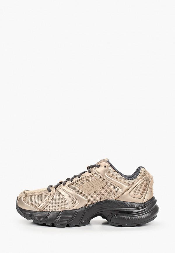 женские кроссовки reebok classic, золотые