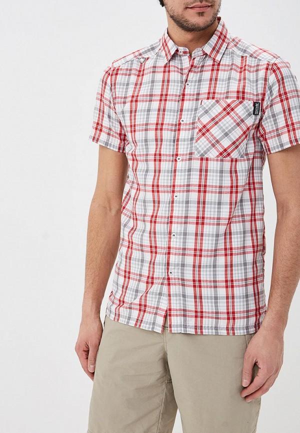 мужская спортивные рубашка regatta, серая