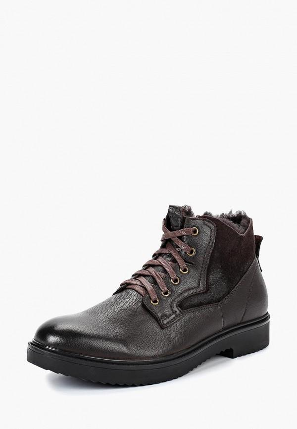 Купить Ботинки Rosconi, ro036amcrzq7, коричневый, Осень-зима 2018/2019