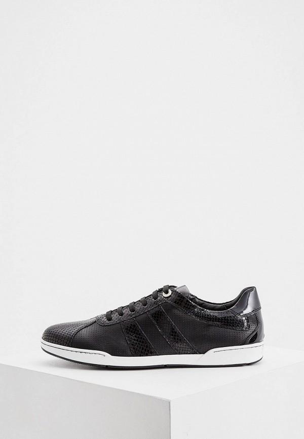 мужские низкие кроссовки roberto botticelli, черные
