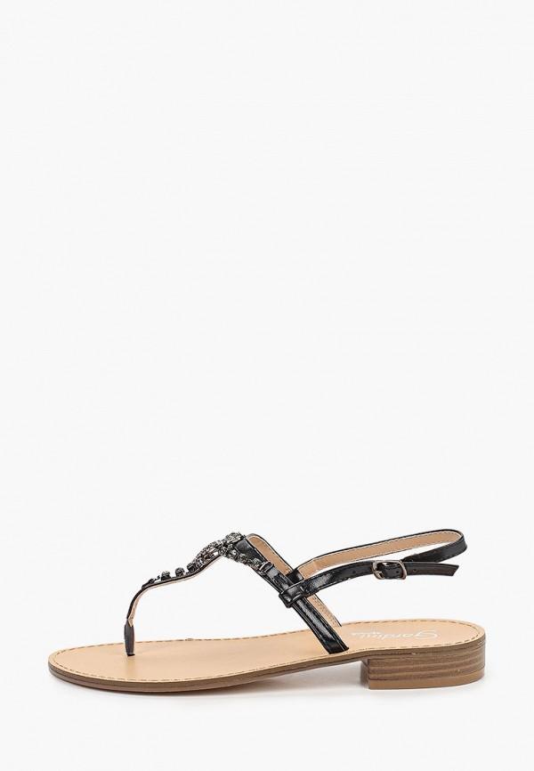 женские сандалии gardini spirit, черные