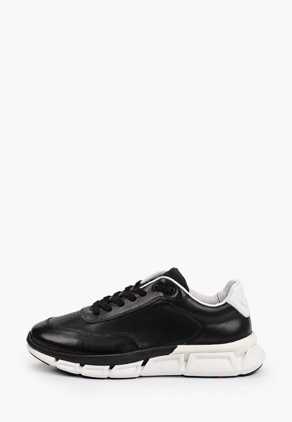 мужские низкие кроссовки lloyd, черные