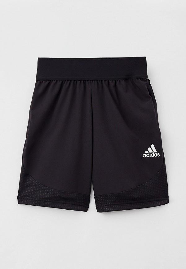 Шорты спортивные adidas черного цвета