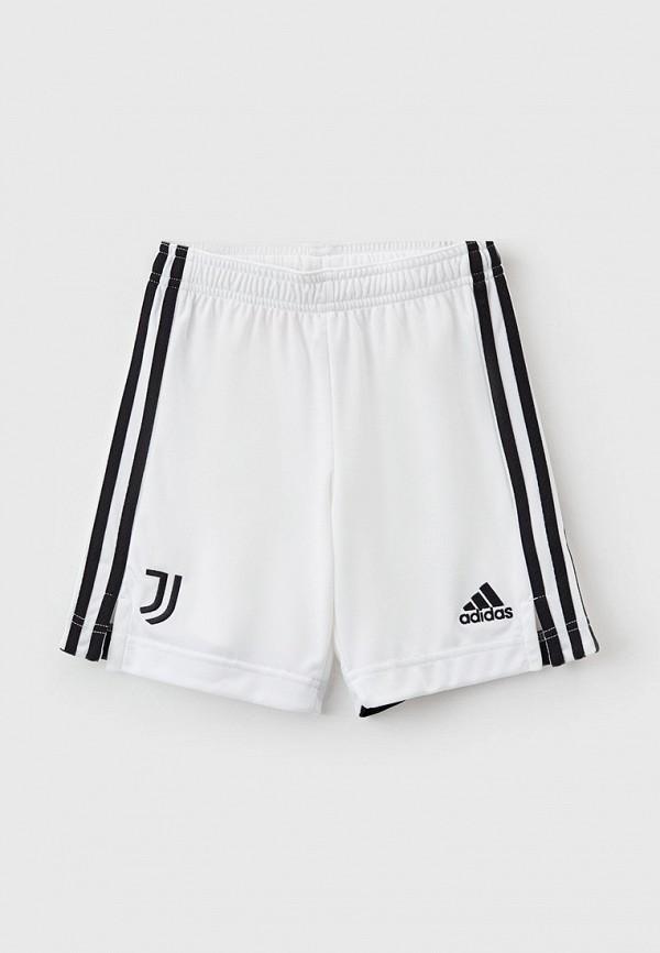 Шорты спортивные adidas adidas GR0606 белый фото