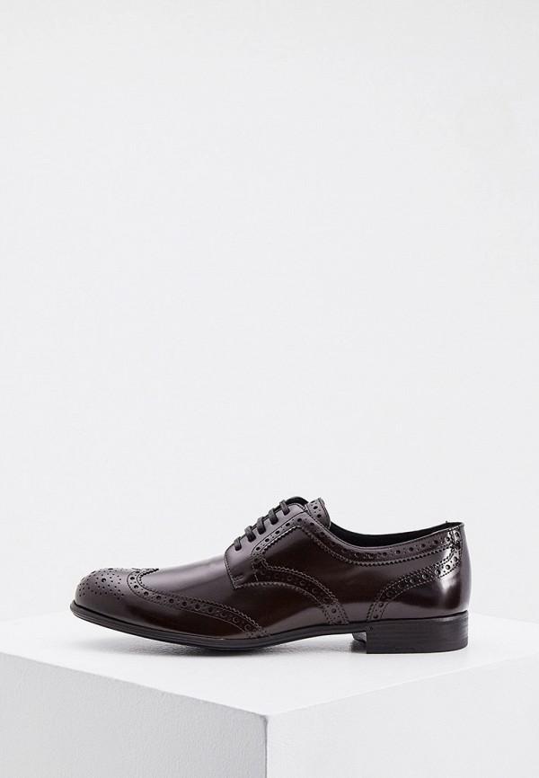 Ботинки Dolce&Gabbana RTLAAL574101E360