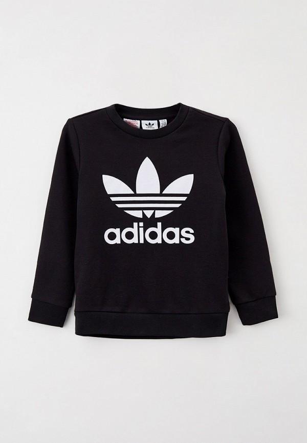 Свитшот Adidas RTLAAP251201CM134