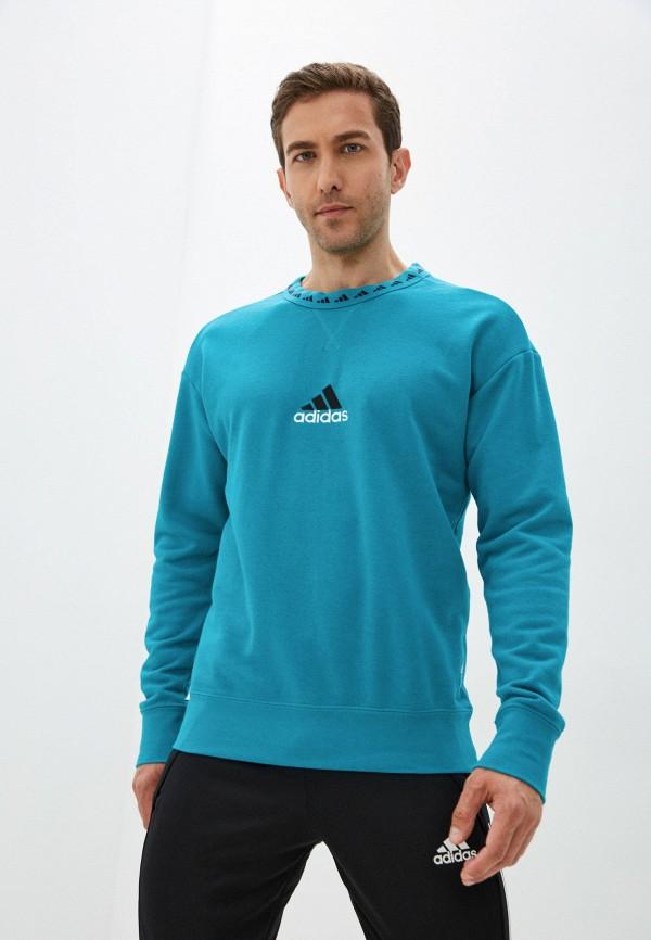 Свитшот Adidas RTLAAQ510201INM