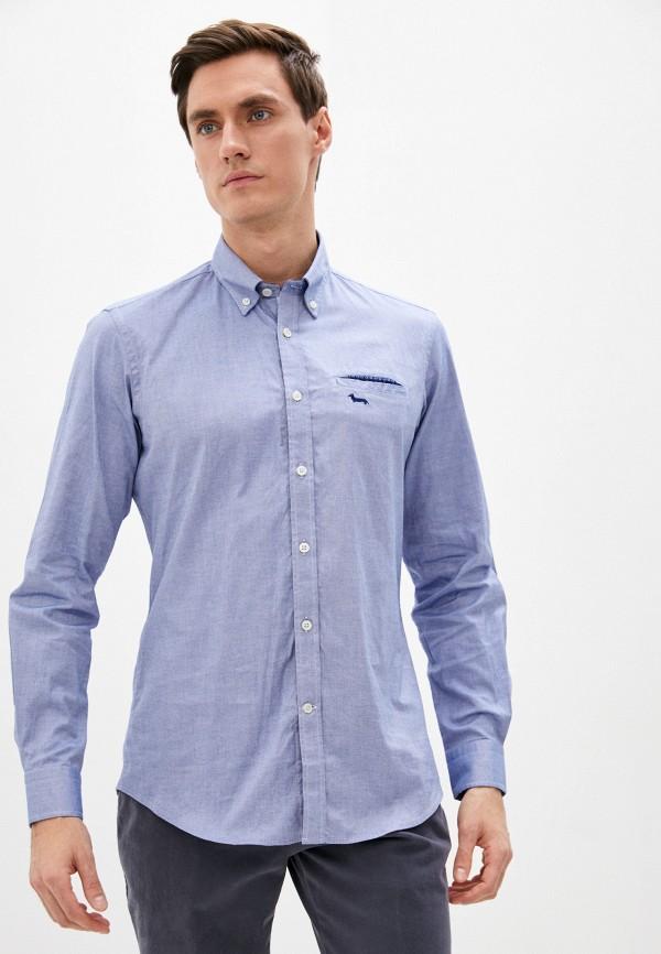 мужская рубашка с длинным рукавом harmont & blaine, голубая
