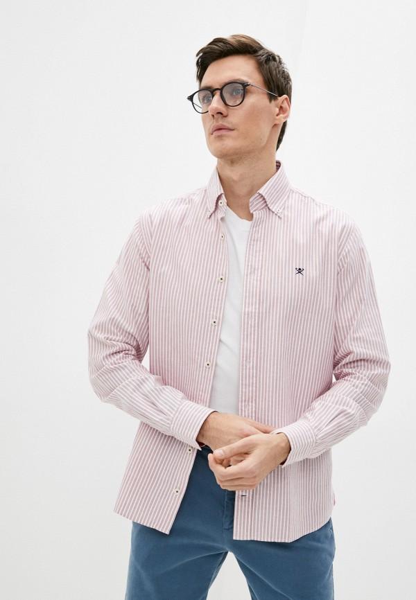 мужская рубашка с длинным рукавом hackett london, розовая