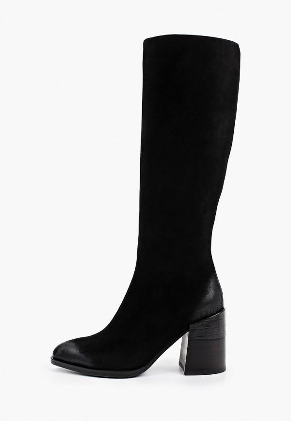 женские сапоги covani, черные