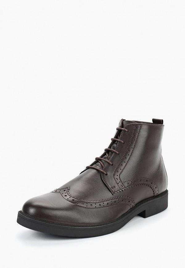 Купить Ботинки Salamander, sa815amclpm3, коричневый, Осень-зима 2018/2019