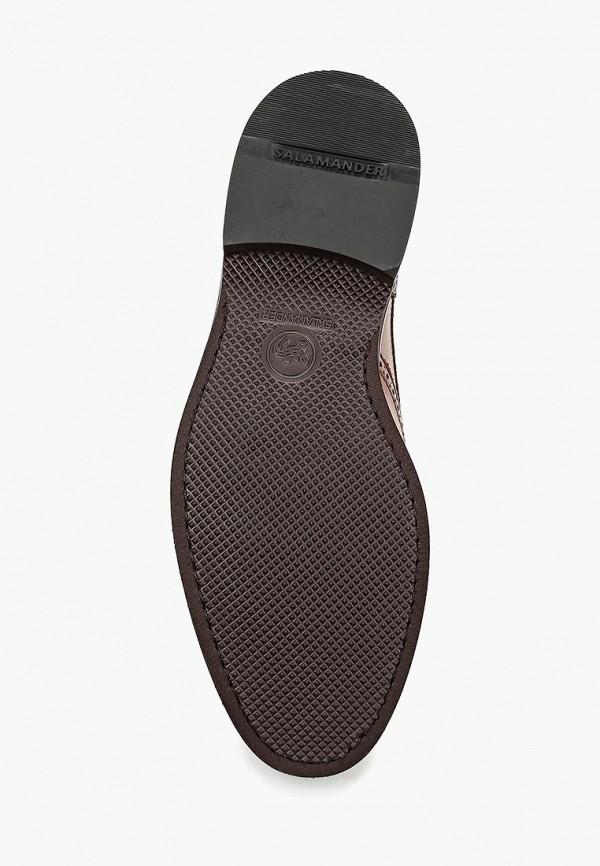 Фото 3 - мужские туфли Salamander коричневого цвета
