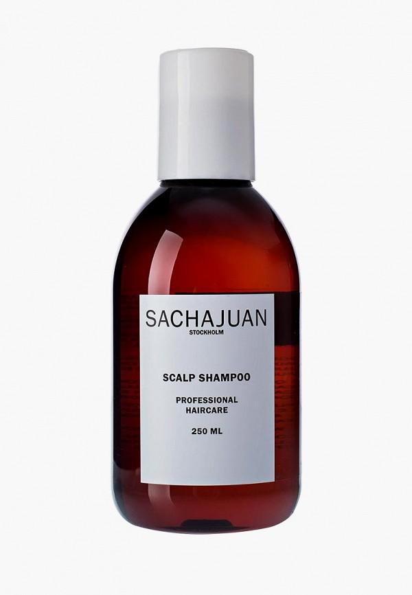 Купить Шампунь Sachajuan, для чувствительной кожи головы 250 мл, sa978lwcuhh2, прозрачный, Весна-лето 2019