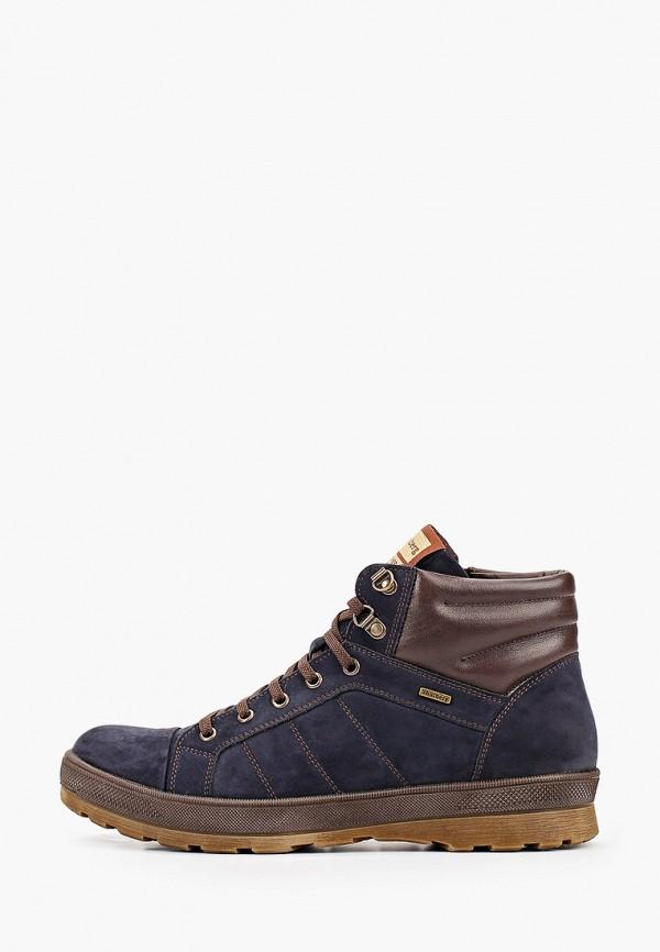 мужские ботинки shoiberg, синие