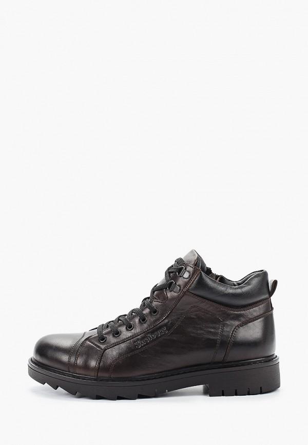 мужские низкие ботинки shoiberg, коричневые
