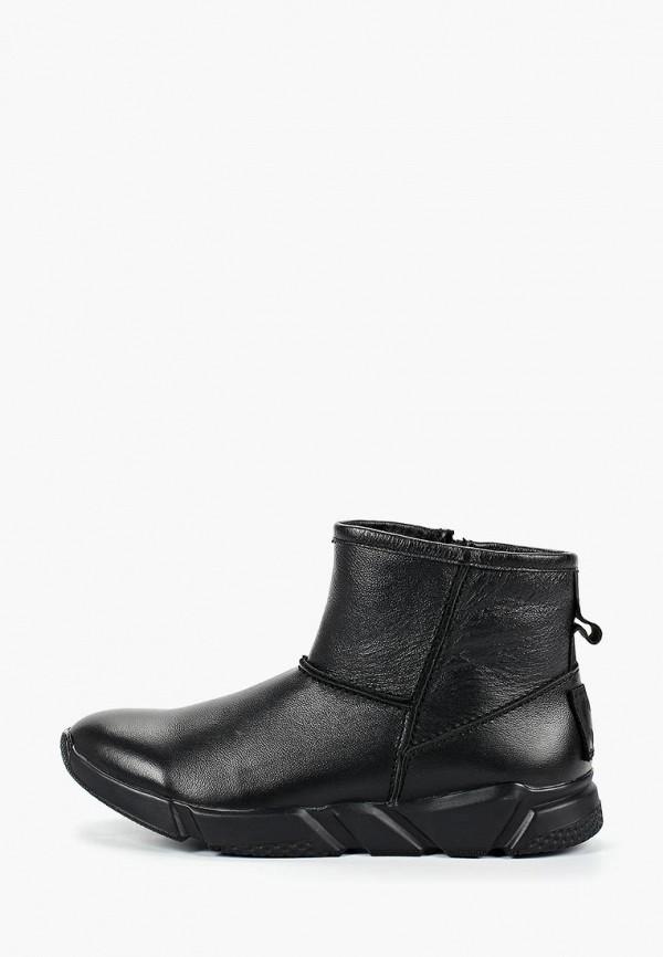 мужские сапоги shoiberg, черные