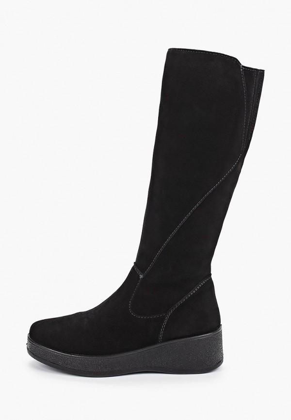 женские сапоги shoiberg, черные