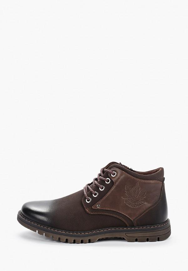 ботинки shuzzi для мальчика, коричневые