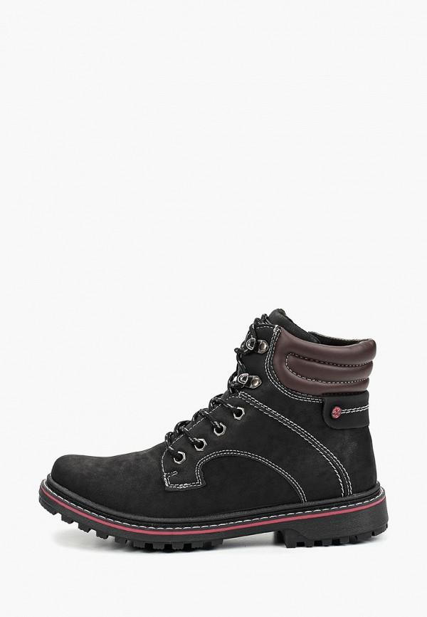 все цены на Ботинки Shuzzi Shuzzi SH015ABFYZG3 онлайн