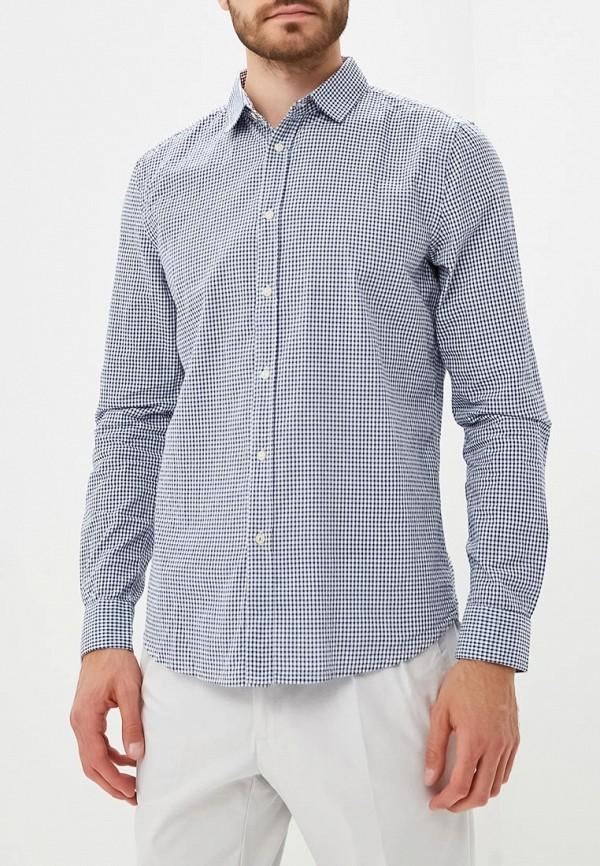 Купить Рубашка Sisley, SI007EMBYWS8, синий, Осень-зима 2018/2019